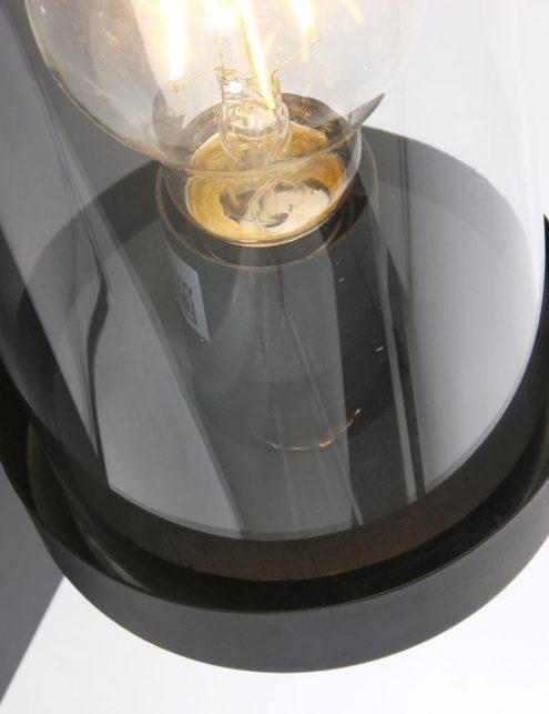 Lampe-cloche-murale-de-couleur-noire-et-verre-4