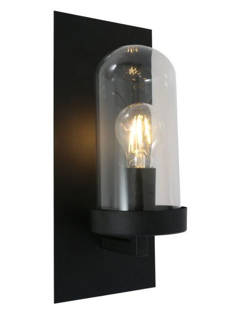 Lampe cloche murale de couleur noire et verre