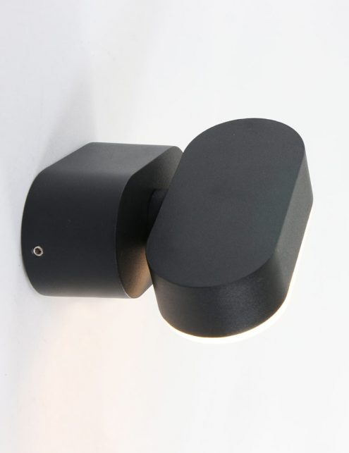 Lampe-tournante-noire-dexterieur-2