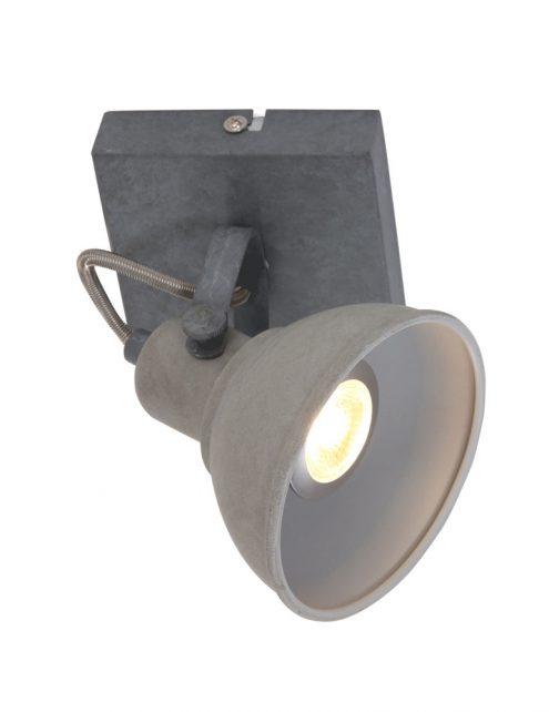 Plafonnier spot industriel gris anthracite à 1 lumière ajustable