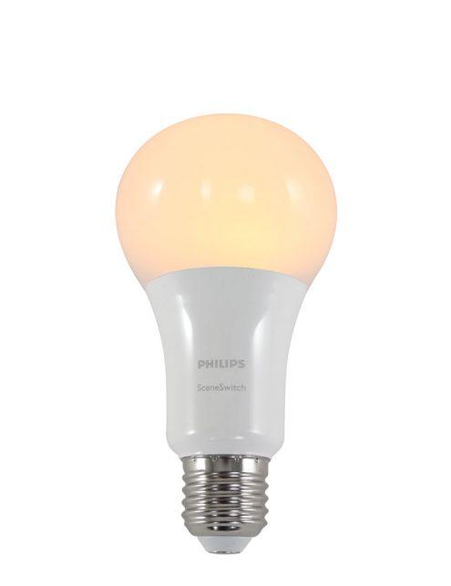 ampoule led culot e27
