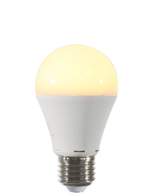 ampoule led e27 pas cher