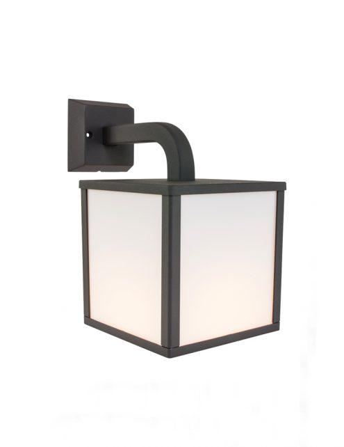 applique cube