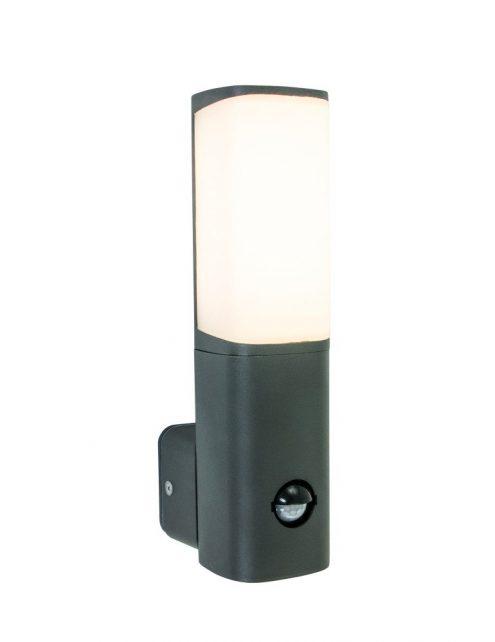 borne lumineuse exterieure avec detecteur