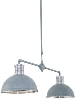double suspension luminaire