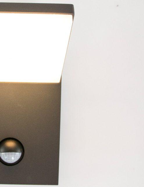 lampe-murale-exterieure-1