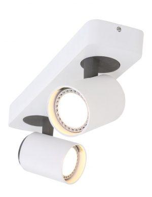 plafonnier 2 lampes