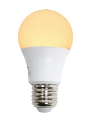 Ampoule LED E27 5W-I14968S