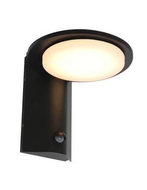 Lampe LED d'extérieur avec capteur Luzon Steinhauer noir-2714ZW