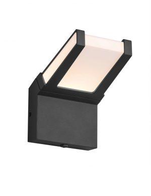 Applique extérieure anthracite avec variateur crépusculaire-2551ZW
