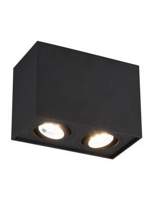 Plafonnier à double projecteursBiscuitnoir-2618ZW
